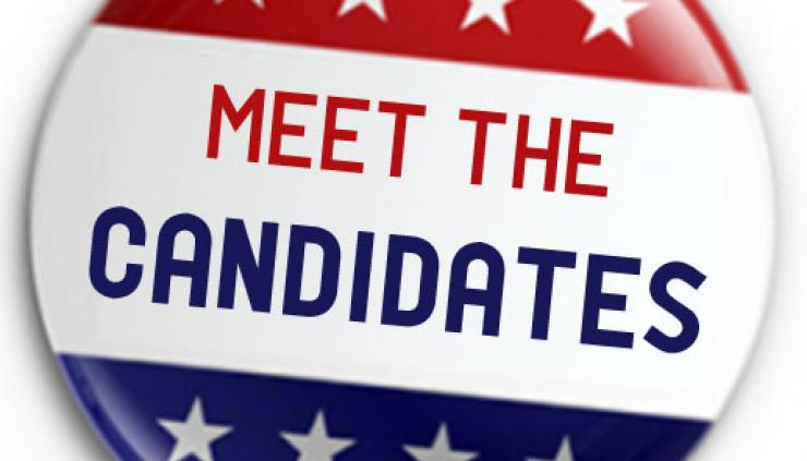 Meet Your 2016 Greater Valley Glen Council Candidates