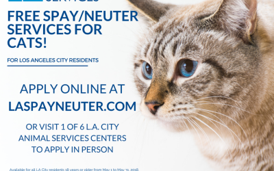 Free Spay/Neuter Cats in May