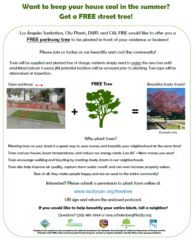 Get a Free Street Tree | Greater Valley Glen Council