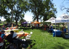 Valley Glen Neighbors Enjoy Summer Festival