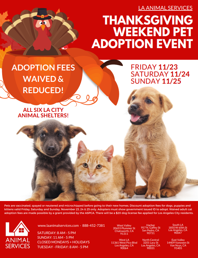 Thanksgiving weekend pet adoption event