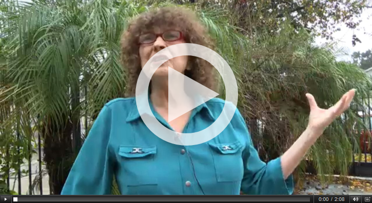 Joanne D'Antonio tree advocacy video
