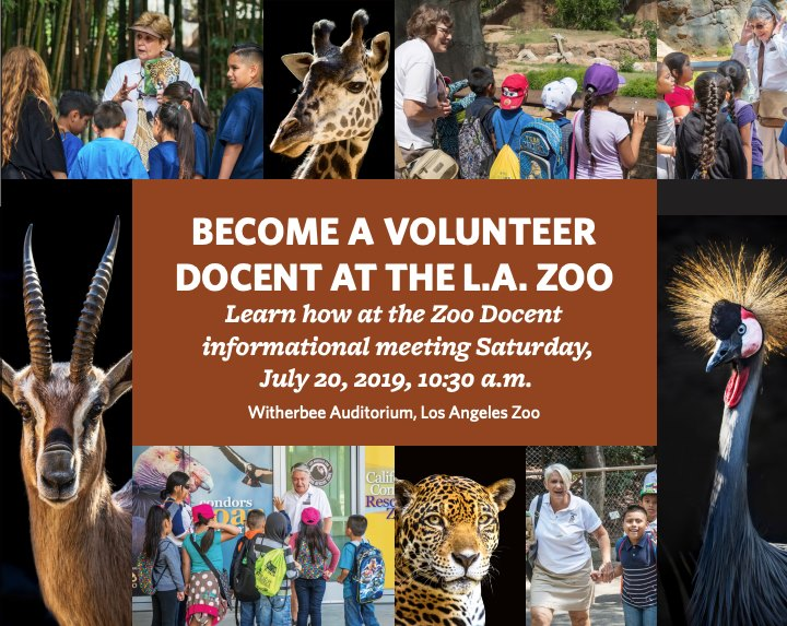 become a zoo docent