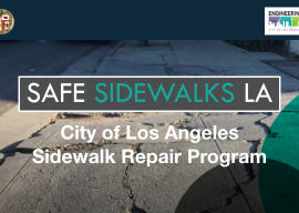 Comment on Sidewalk Repair