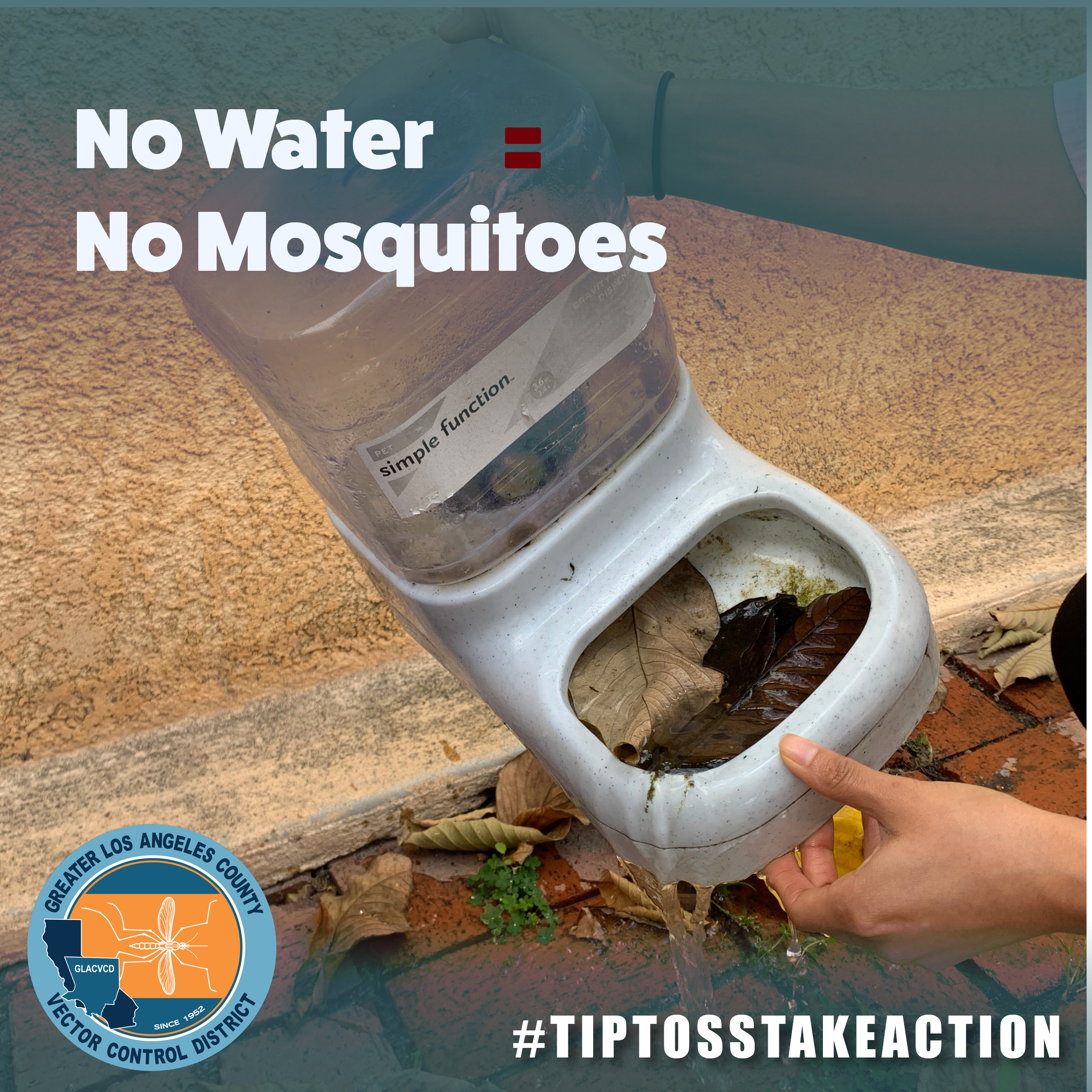 no water no mosquitoes