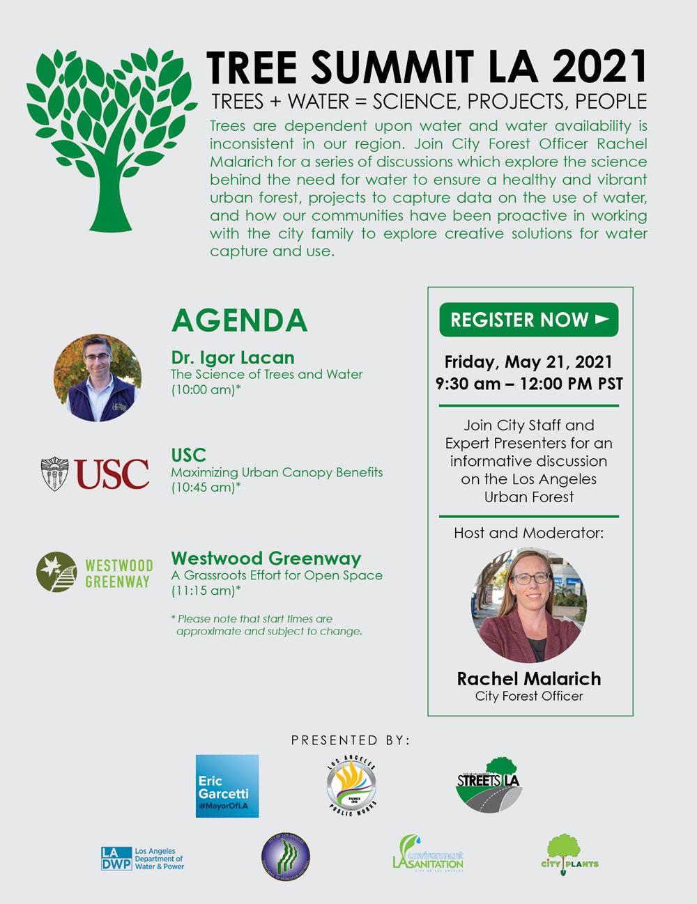 Tree Summit