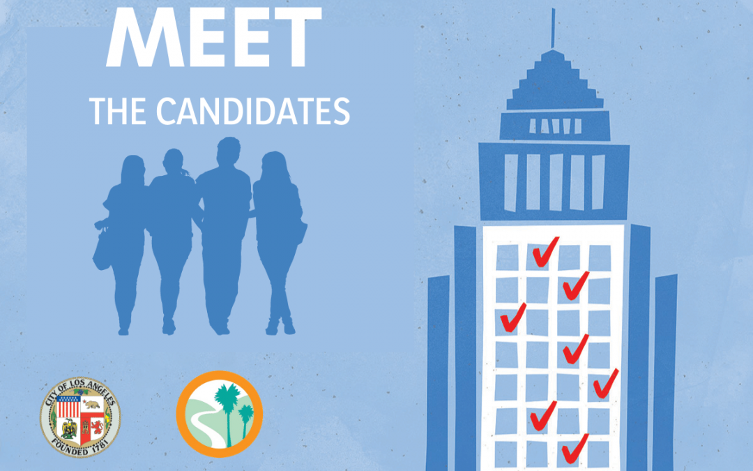 Meet the Candidates