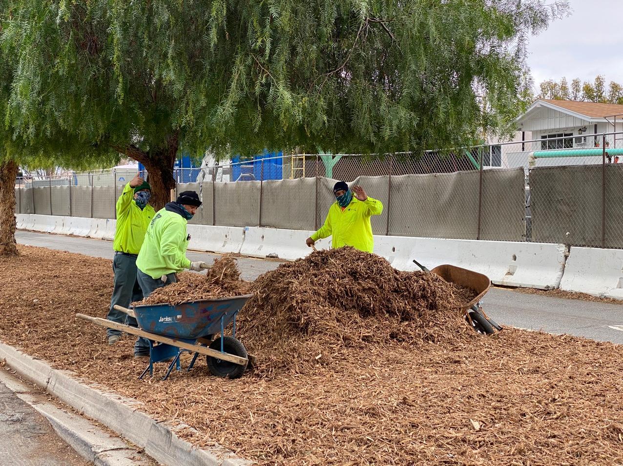 Adding mulch to median